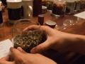 hand-rolled jasmine tea